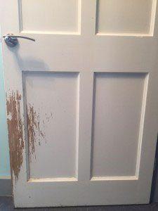 door scratched by cat not using indoor cat fence